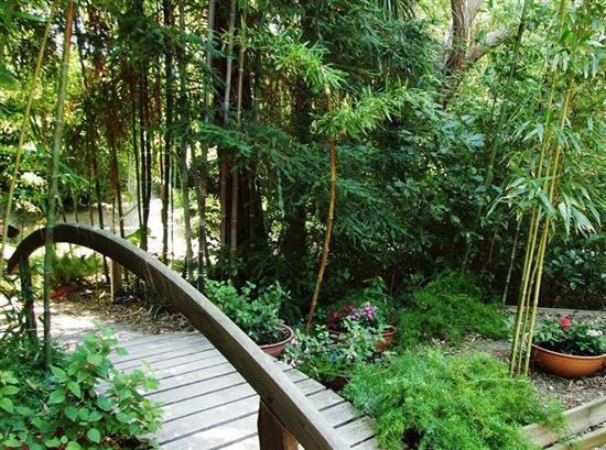 JARDIN EXOTIQUE - PONTEILLA Jardin exotique de Ponteilla