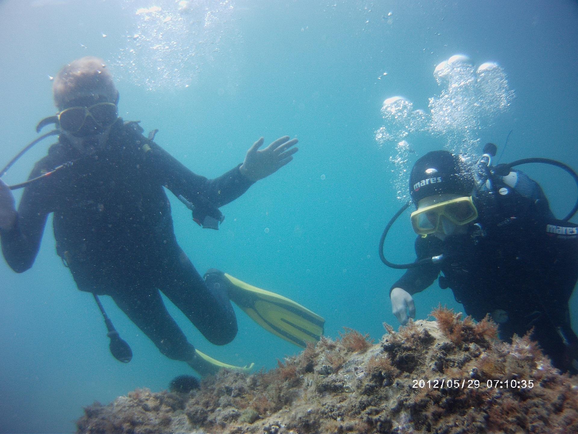 © lagune plongee