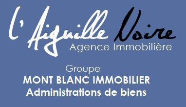Agence immobilière l'Aiguille Noire Mont Blanc immobilier © OT Saint-Sorlin d'Arves