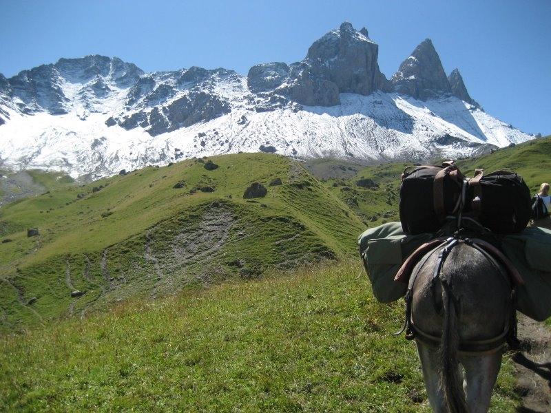 Panoramische wandeling met ezels op de uitlopers van de Mont Charvin © OT Saint-Sorlin d'Arves