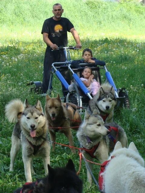 karting chiens de traineaux © Lionel Villar