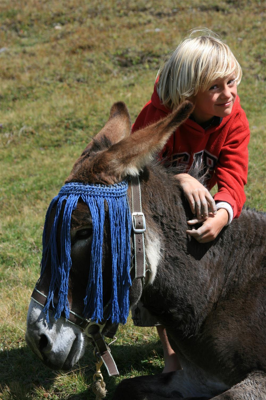 Workshop in de ezelboerderij © Marie-Pierre Dauphin