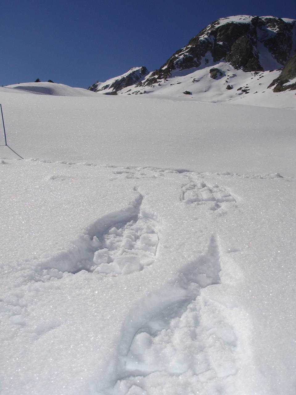 Snow shoeing with a guide : discovery of La Balme slope © ESF (Ecole de ski français)