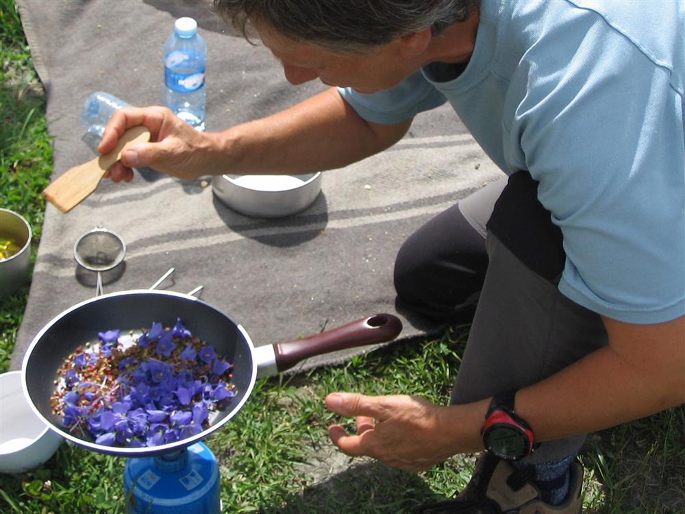 Usage culinaire des plantes de montagne © ©BMA