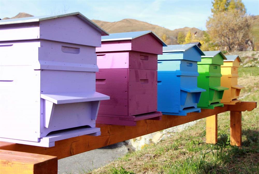 Arves honey making © Office de Tourisme SJA