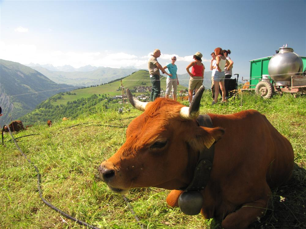 Découverte des Alpages d'Albiez © OT Albiez