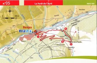 LA FORET DE L'AYRE © Pays des Vallées des Gaves