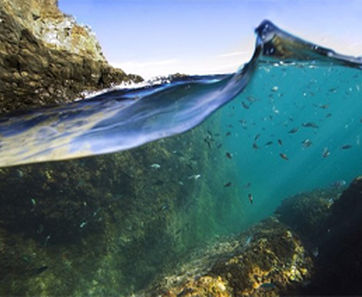 Balade aquatique