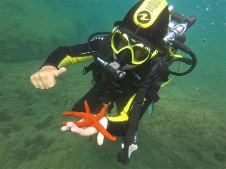 Formation Plongée Mer pour enfants