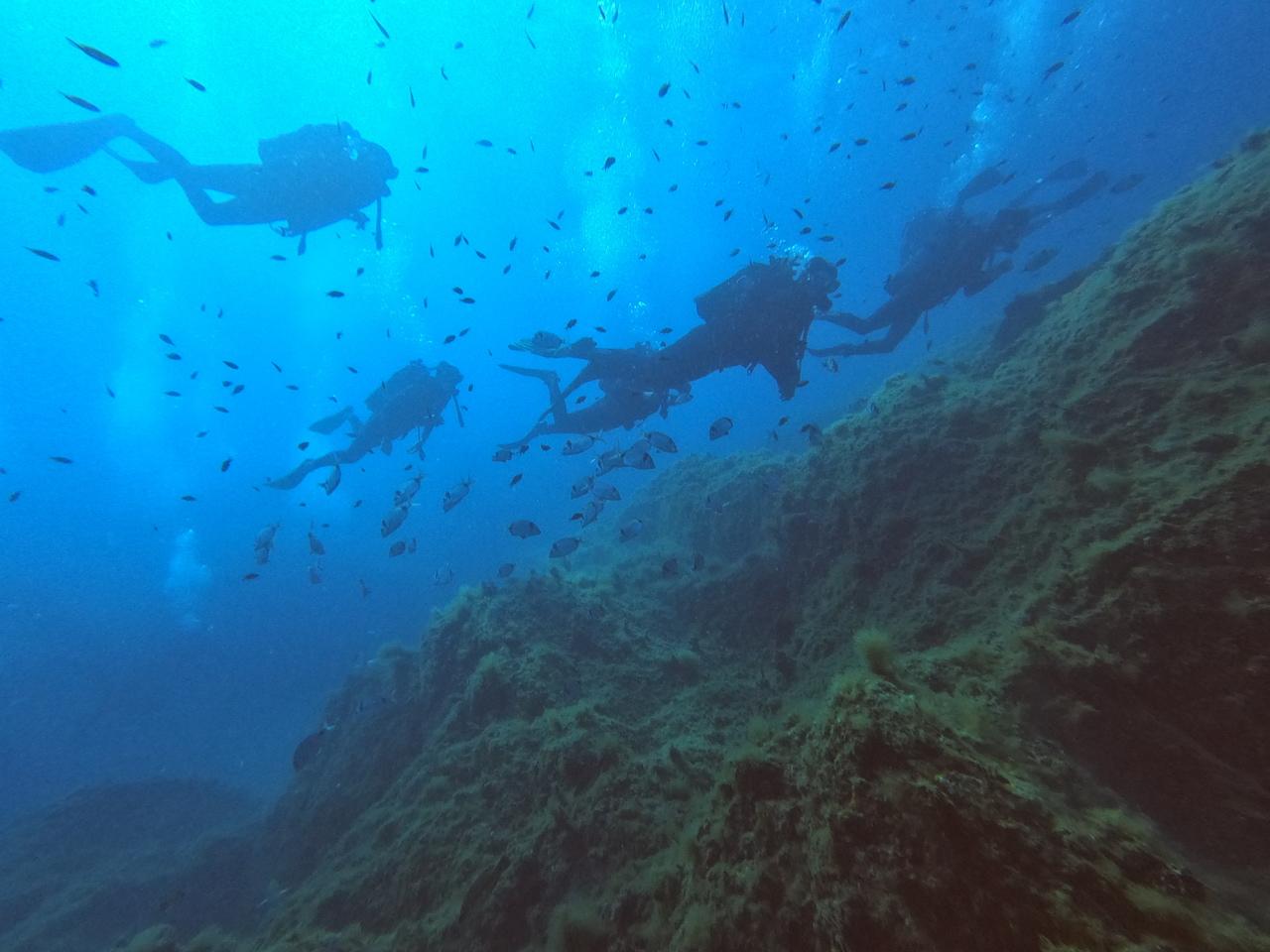 Explorations encadrées carte de 6 plongées